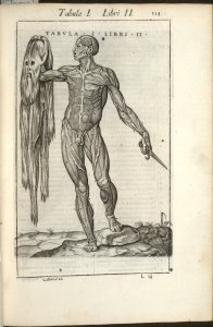 Flayed man holding up his own skin. (c) Royal College of Physicians, Edinburgh http://images.is.ed.ac.uk/luna/servlet/s/7bxti3